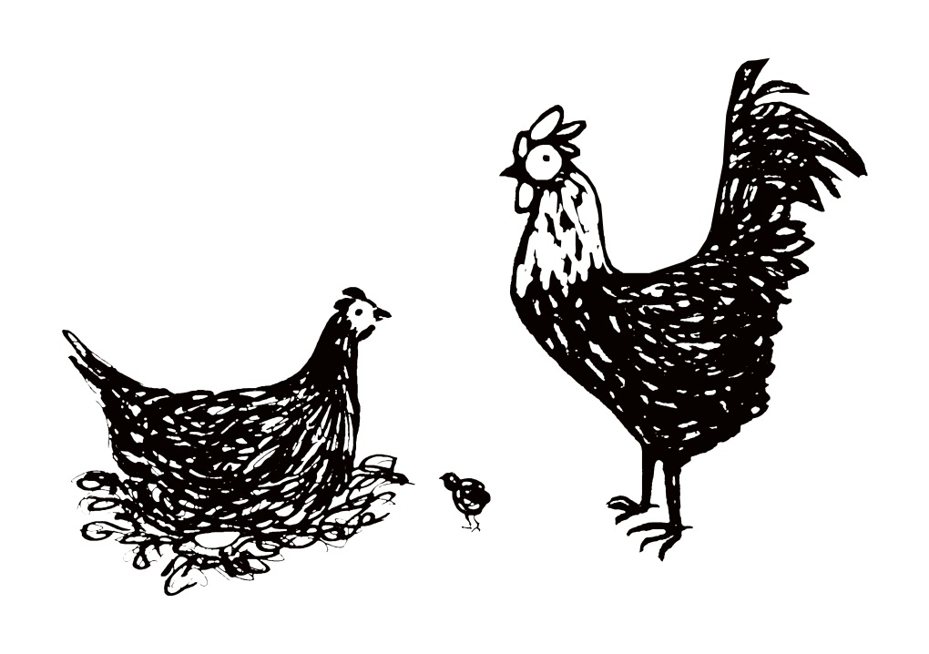 Chook Family.jpg